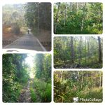 FOR SALE – LAND AT BT.25 HULU LANGAT SELANGOR