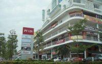 Platinum Mondrian PV128, Setapak