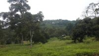 Freehold Land in Tanjong Malim for Sale
