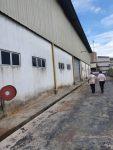 Factory at Perindustrian Estate,Bukit Rambai Melaka,Malaysia for SALE / RENT!